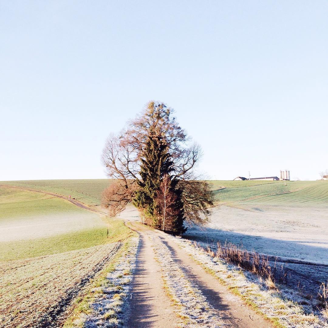 Guten Morgen heute geht's wieder zurück in den Alltag bevor wir schonwieder Richtung Silvester starten